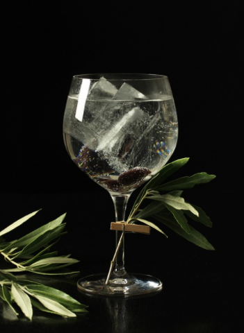 Buy Gin for the best price